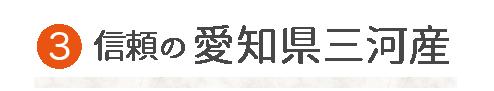 愛知県三河産