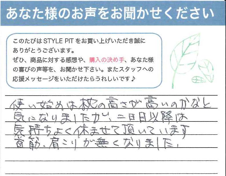 stylepit_voice