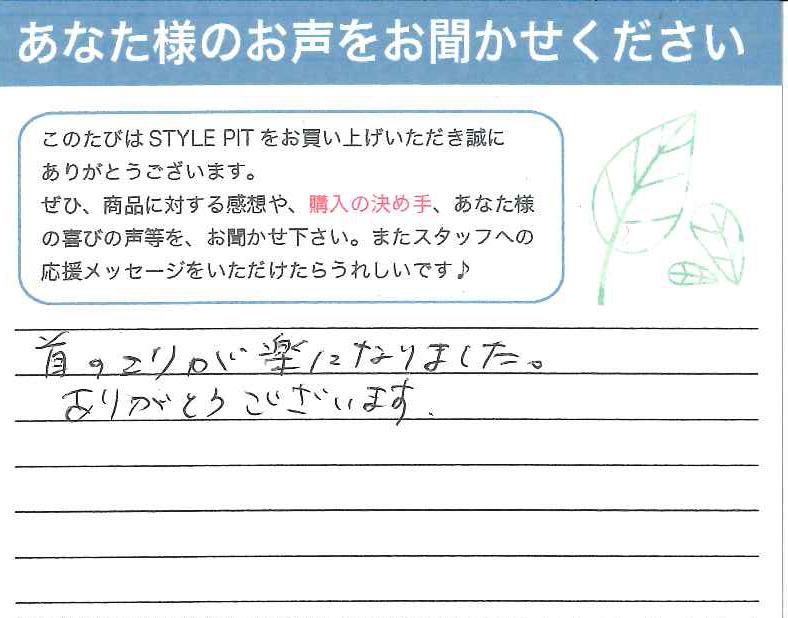 _stylepit_voice